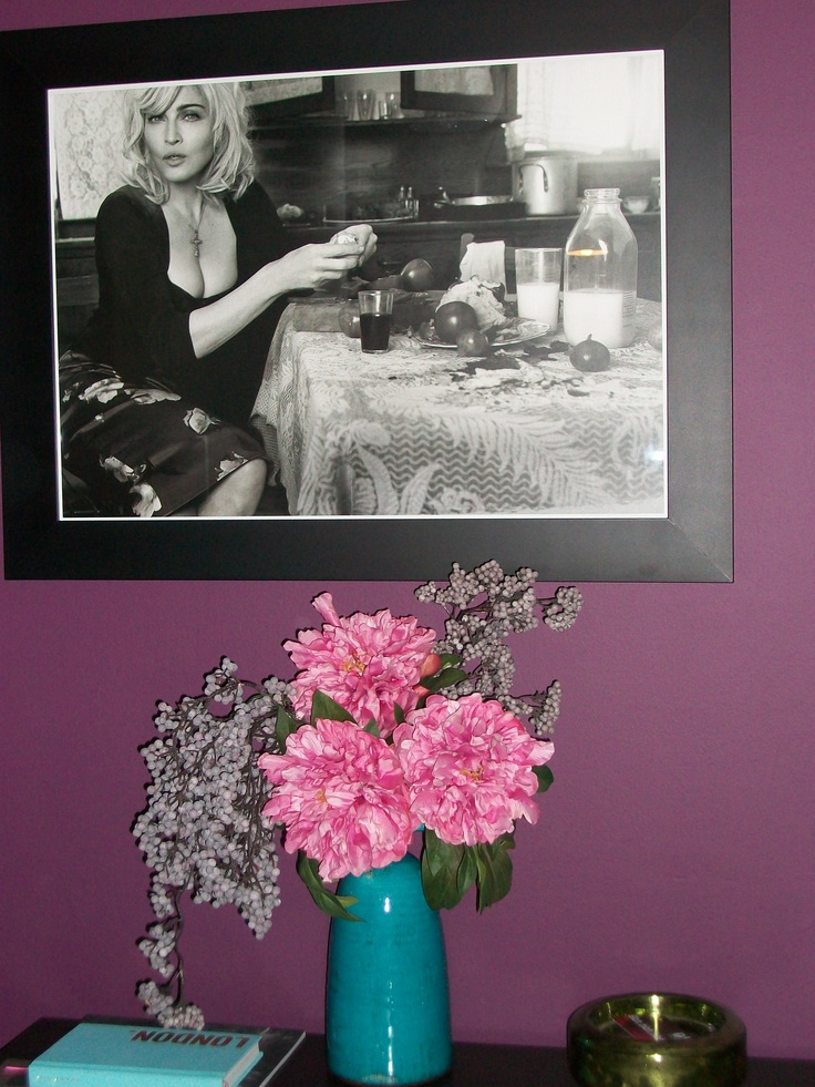 "DULUX ""MULBERRY BURST"" paint on feature wall, ABIGAIL AHERN VASE & FLOWERS, MADONNA for DOLCE & GABBANA"