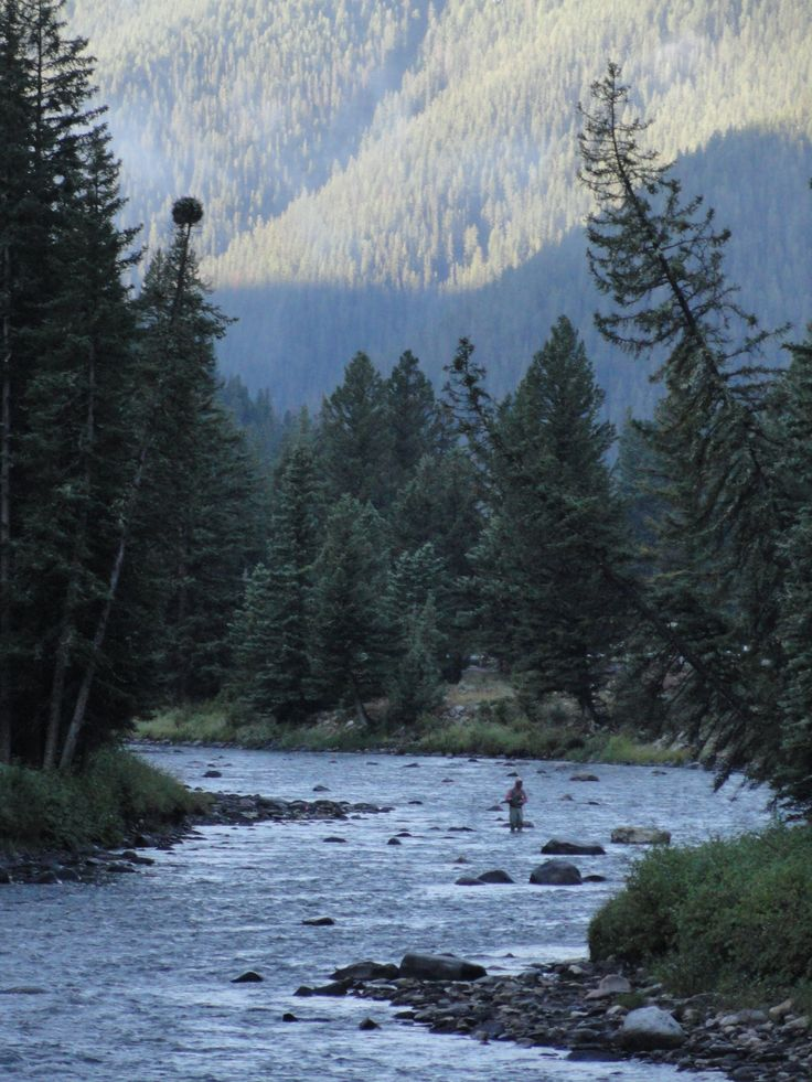 Watching for fish on the Gallatin River Big Sky Montana.   Oh how I loved fishing in Montana,
