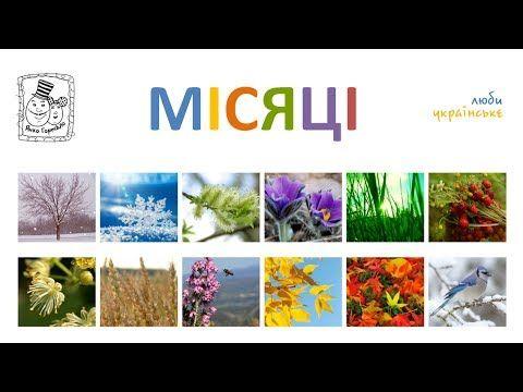 Місяці. Українська для дітей. Вчимо назви місяців. Ukrainian preschool - YouTube