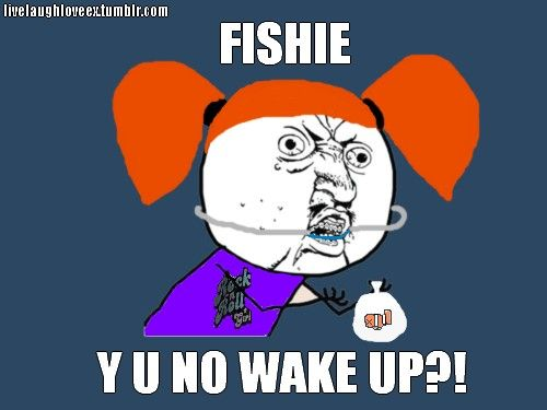Y U No Meme Funny : Haha our fish died yesterday this is funny shit lmao