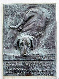 http://mascotasblogueras.bin/curiosidades/heroes-caninos