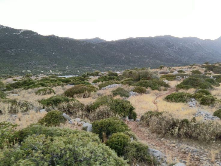 Pin by Sanja Rasovic on Greece | Golf courses, Outdoor, Greece
