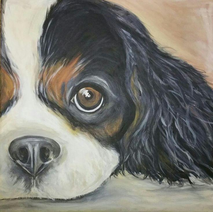 Cavalier king charles 50x50 cm Acrylic on canvas