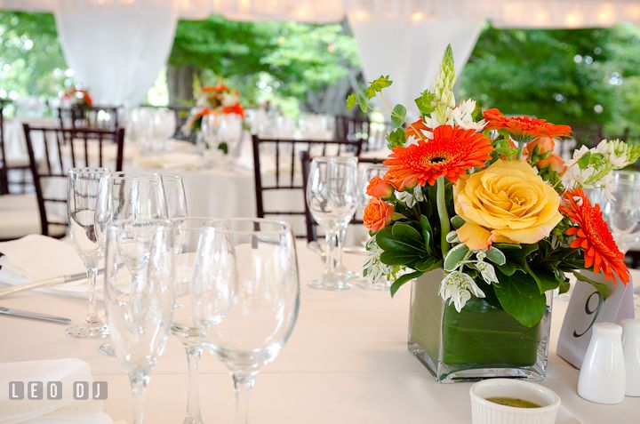 Yellow rose and orange gerbera daisy flowers for table