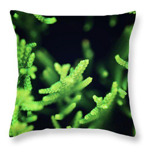 Green Fantasy By Svetlana Yelkovan Throw Pillow #SvetlanaYelkovanFineArtPhotography #pillow  #ArtForHome #FineArtPrints #green #abstract