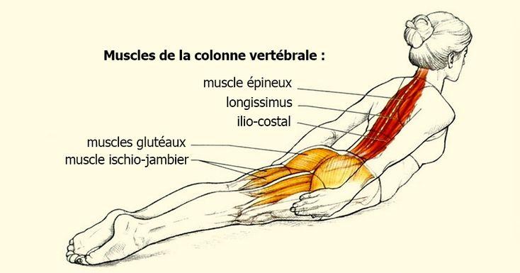 Mal de dos: un exercice simple et express qui améliorera votre posture