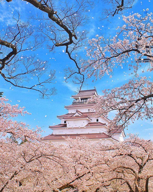 Pin On Amazing Japan