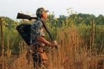 Dove hunting gear and cleaning tips