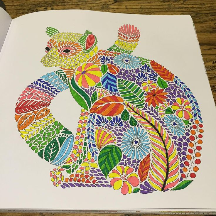 226 Best Images About Tropical Wonderland Colouring Book