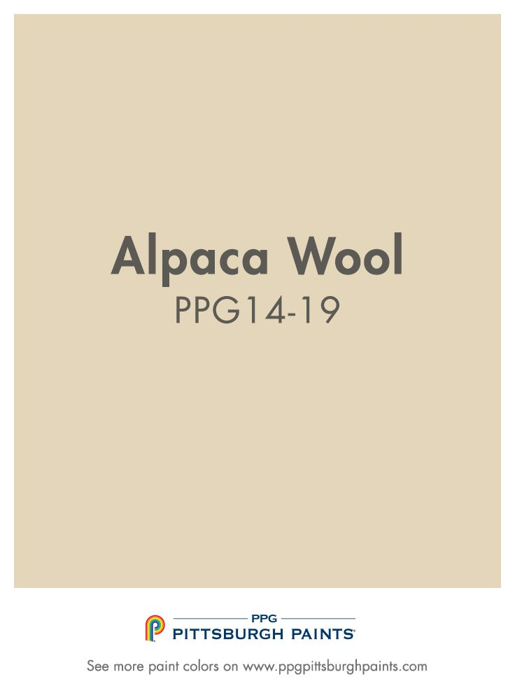 Alpaca Wool Ppg14 19 From Ppg Pittsburgh Paints Neutrals