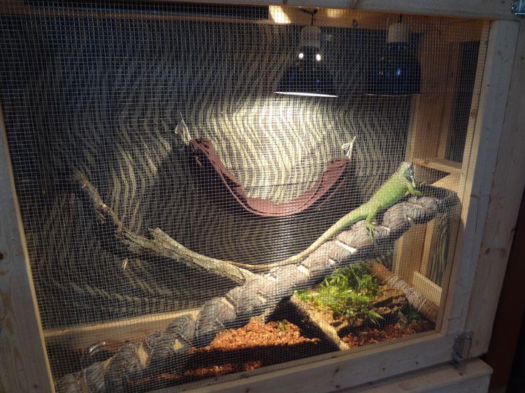 Homemade Iguana Cage