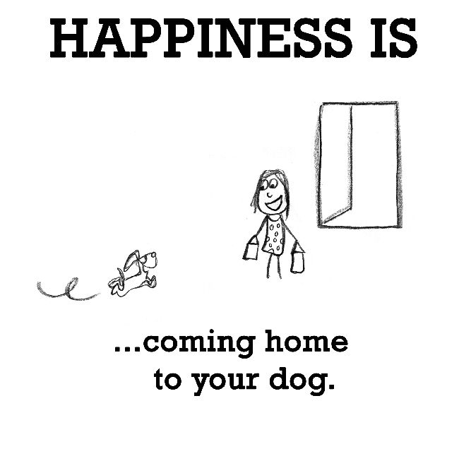 Happiness is, coming home to your dog. - Cute Happy Quotes