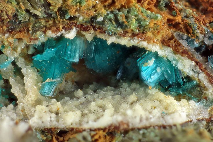 Serpierite crystals. Trentini Mine, Vicenza Province, Veneto, Italy. Copper Zinc. Secondary mineral found in altered smelter slags and oxidized sulfide veins.