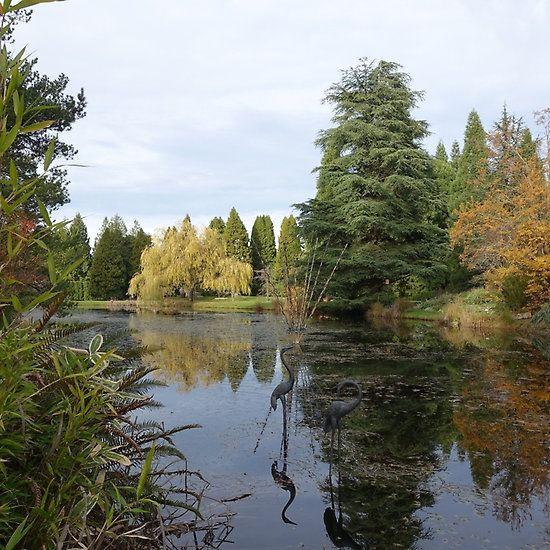 Van Dusen Botanical Garden in Vancouver.