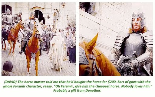 "16 Insightful Gems On ""Lord Of The Rings"" From The Cast. Faramir got the cheapest horse. No one loves him."