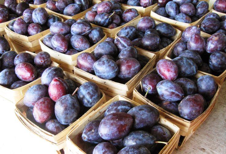 A nyár végi SZILVA az egyik legjobb természetes vitaminforrás!