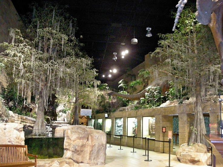 Creation Museum Our Road Trips Pinterest