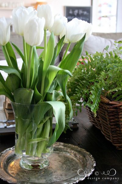1 penny in the water keeps tulips from drooping?  Must try.