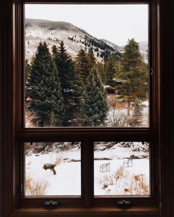 An envious view - can you imagine writing or drawing by this window?