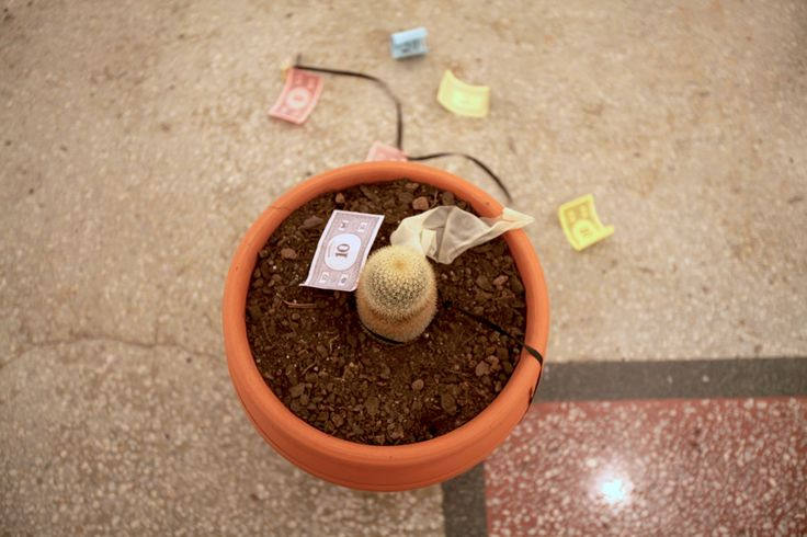 Monopoly, 2013, Mixed-media installation (cacti in ceramic pots, balloons, ribbon, Monopoly notes). As time passes, the balloons...