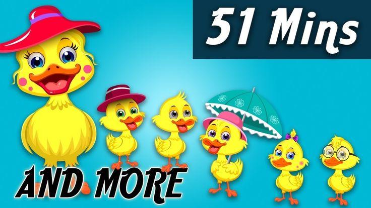 Five Little Ducks | Nursery Rhymes Collection | Baby Hazel Nursery Rhymes For Kids