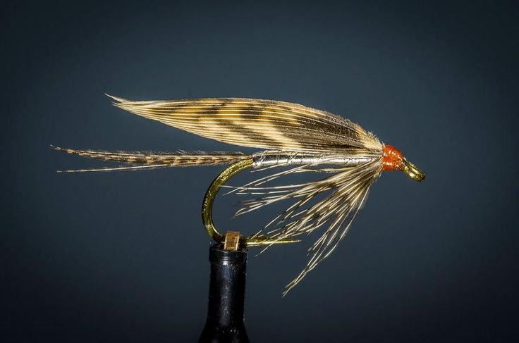 224 best images about wet flies on pinterest fly tying for Wet fly fishing