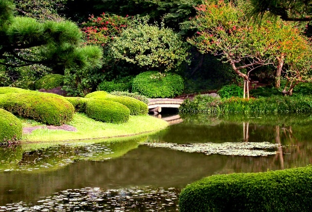 Emperial palace east gardens Japan