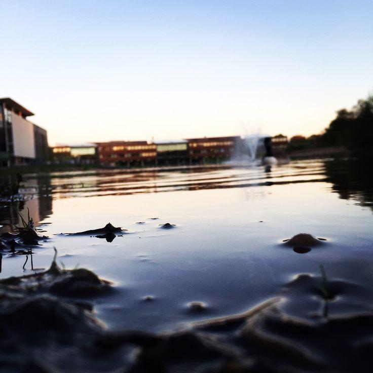 Jubilee Campus lake