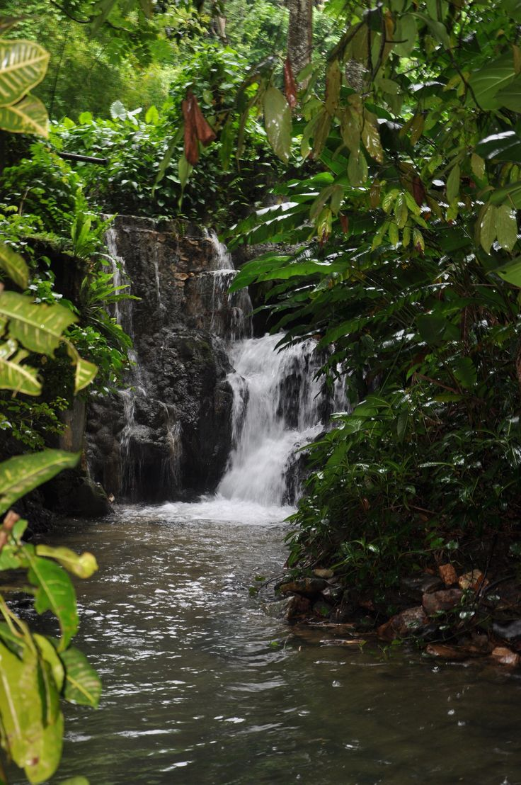 Montego Bay Jamaica, Waterfall.....well im going back to Jamaica