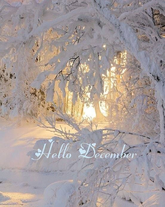 """.""""Hello December"""" come and make a short visit now in September, we need some cooling down. It's over 100 degrees out there"""