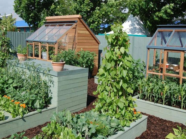 27 best Vegetable Garden Ideas images on Pinterest | Backyard ...