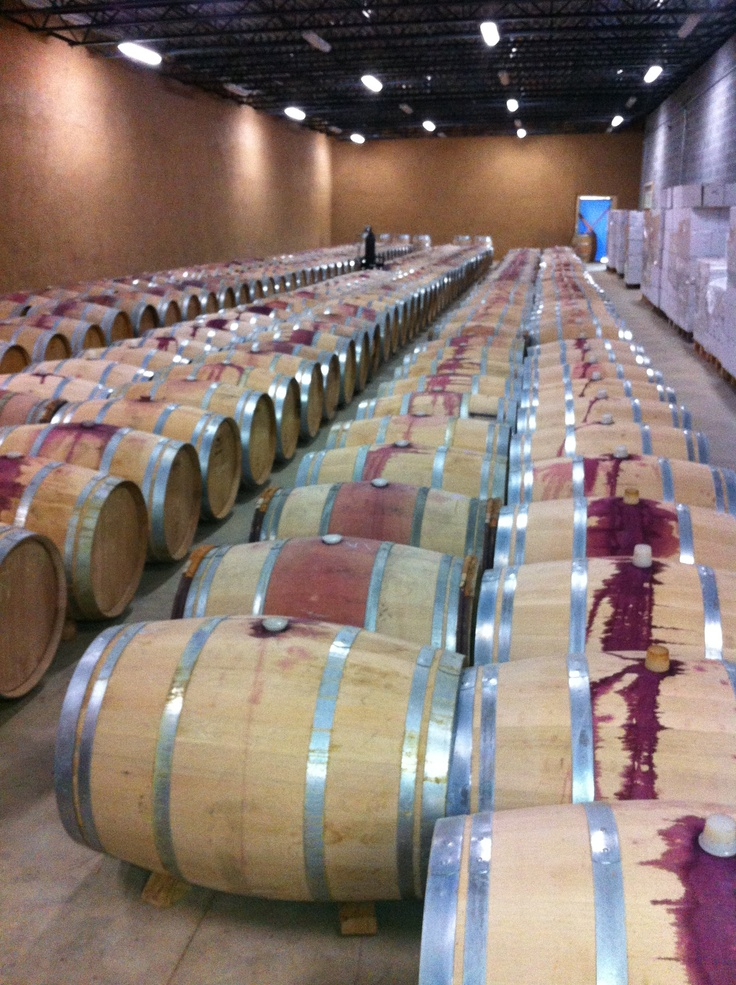 The wine barrel room at Black Ankle Winery