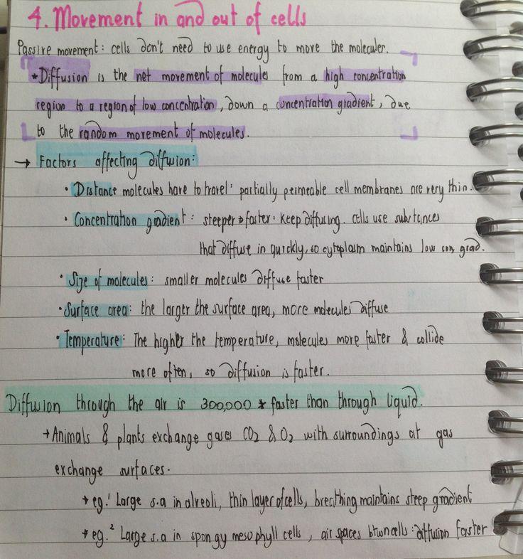coursework physics