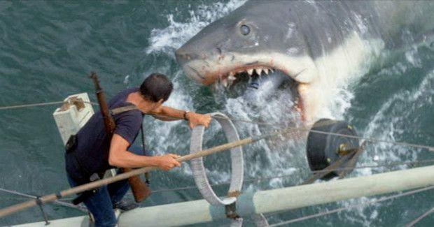 Jaws_Wer den fertigen Film sieht, mit den für damalige Verhältnisse furchterregenden Hai-Szenen, kann kaum glauben, welchen Stress der künstliche Fisch verursacht haben muss. Die Produzenten Richard Zanuck und David Brown befürchteten jedenfalls früh den Totalausfall von Bruce – und baten Spielberg, den Streifen um Aufnahmen mit echten Haien zu ergänzen
