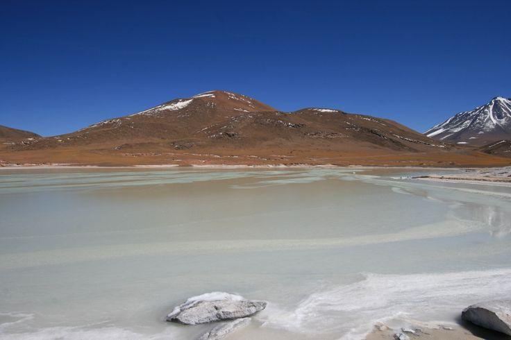 Lagunas altiplanicas, Atacama