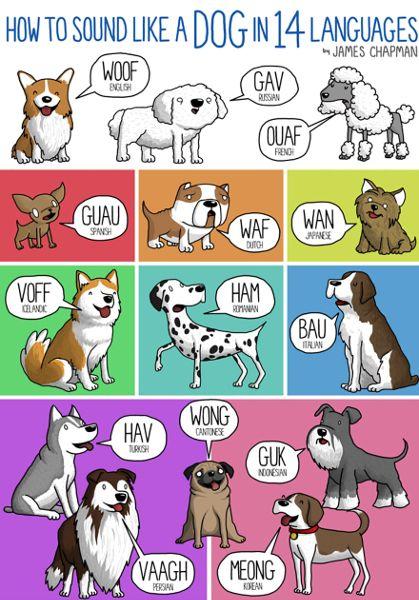 Smack, gnam, bau: le onomatopee nelle diverse lingue spiegate da bellissime infografiche - Radio Deejay e Deejay Tv