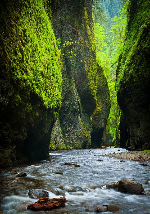 ✮ Oneonta River Gorge Oregon - Stunning!