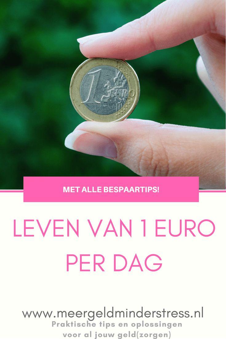 Leven van een euro per dag, kan dat? (Met creatieve bespaartips!) - Meer geld, minder stress