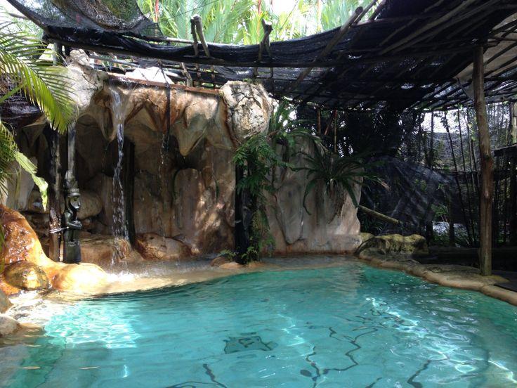 Zwembad met grot en waterval