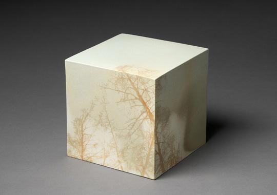 Kirsi Kivivirta's Landscape Cube, 2010