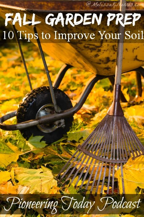 Fall is the time to improve your soil for next year's crop. Use these 10 tips to improve your soil for spring planting. Super easy, but you need to do them now.