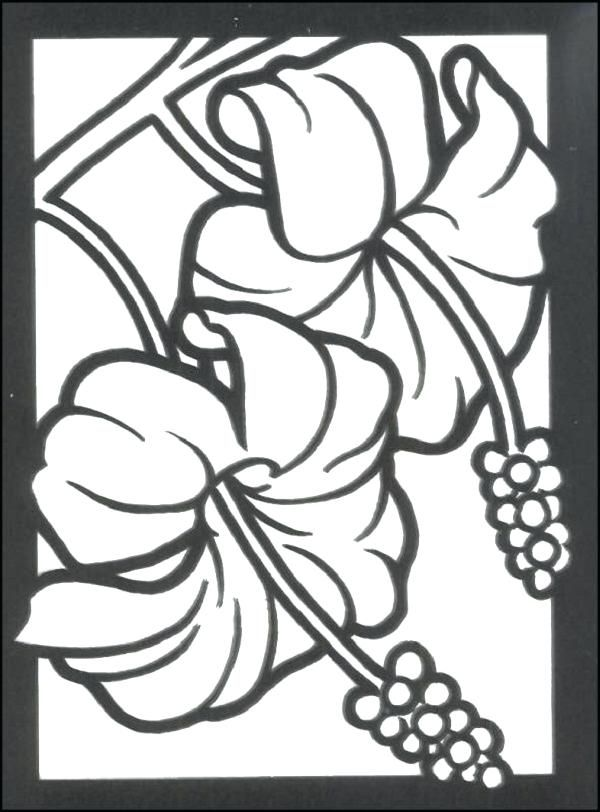 Tropical Flowers Drawing At Getdrawings Stain Glass Coloring