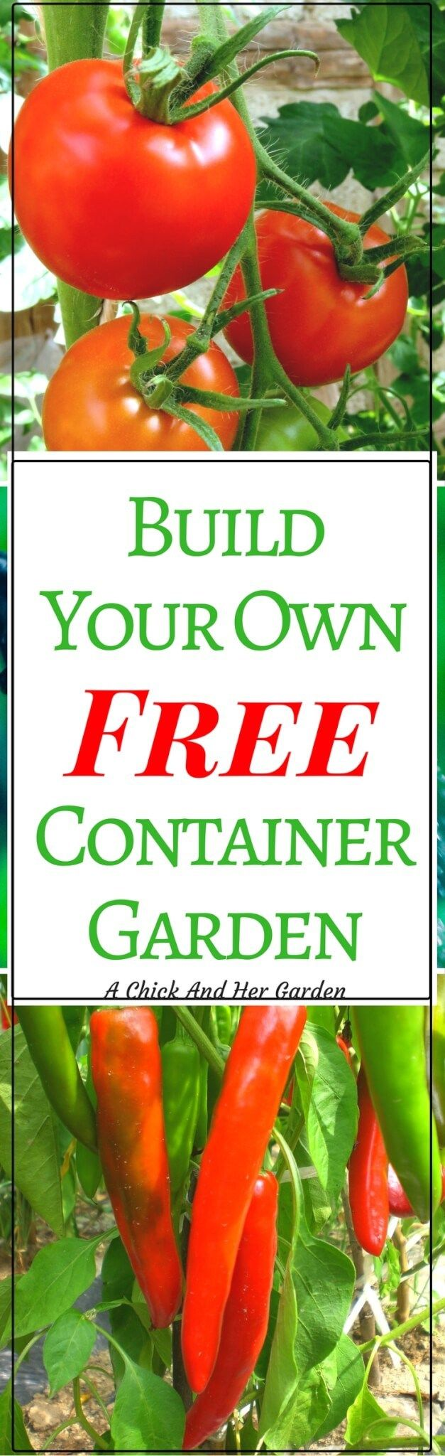 Sometimes we don't have the option of our dream garden. Whether it's lack of land, or poor soil, it doesn't mean you can't grow your own fresh produce! Check out how to build a free container garden!