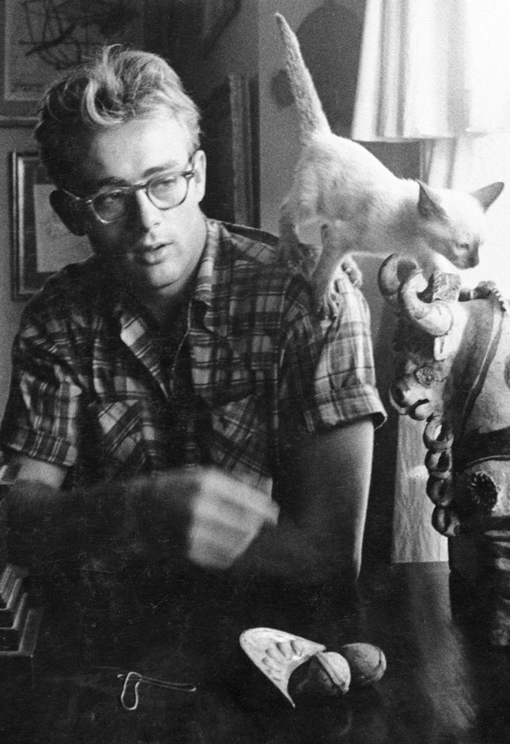 """ James Dean with his cat at home, 1955. """
