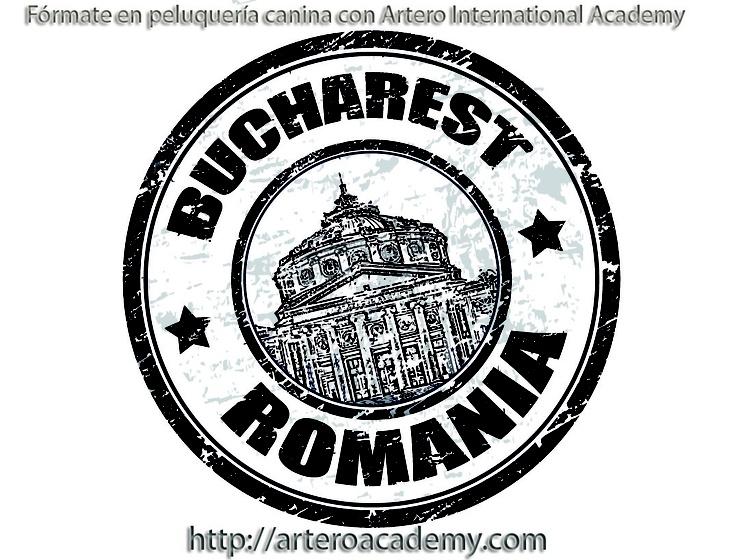 Seminario de Peluquería Canina Masterclass Artero en Bucarest. 27.04.2013.   Fórmate en peluquería canina con Artero International Academy 93 515 00 35