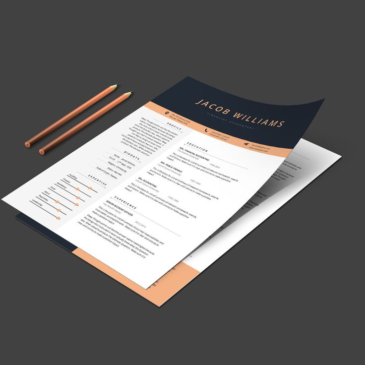 2 pages CV template + cover letter Professionally designed in MS Word