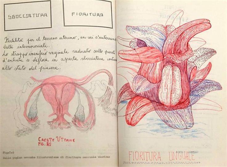 Una delle tavole anatomiche di Sissi per il progetto «Volume interno»
