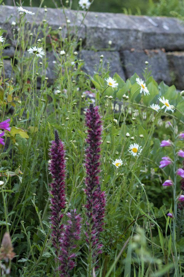 Is Gravetye Manor The Perfect English Garden Garden Shrubs