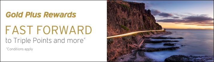 Earn triple Hertz Gold Plus Rewards® bonus points when you rent for 2 days or more from now until April 15, 2014.