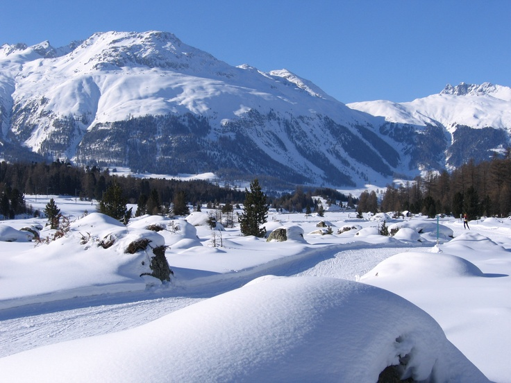 Loipe Pontresina nach Samedan - switzerland: cross country ski run from pontresina to samedan